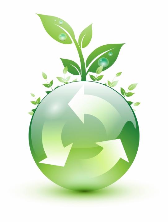 Empresários brasileiros criam metas de sustentabilidade